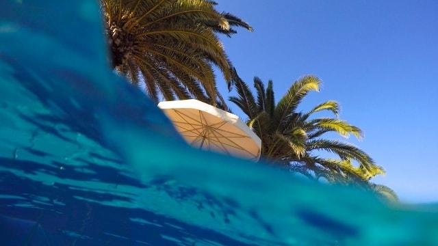 防水カメラで撮影した水中からの写真