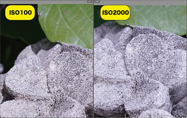 ISO感度を変えて日中の屋外で撮り比べた写真の拡大