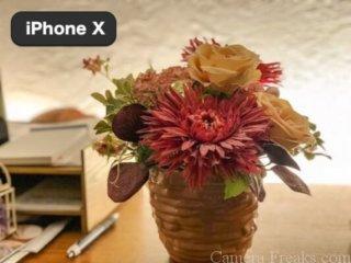 iPhone Xのポートレートモードで撮影した背景をぼかした写真