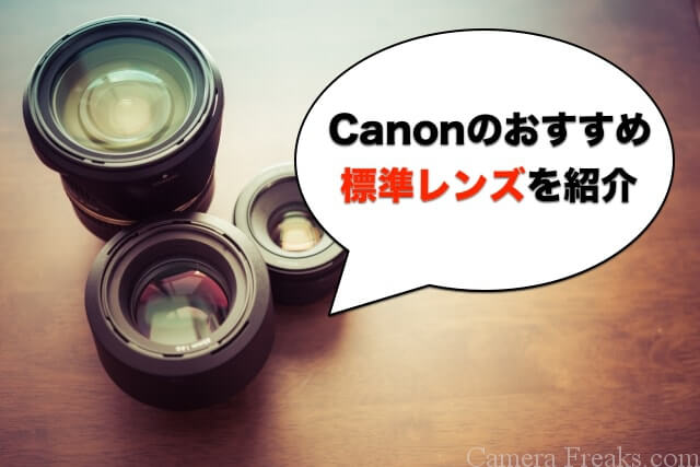 Canonのおすすめ標準レンズを紹介