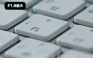 SEL55F18Zで撮影したF1.8の写真の拡大写真