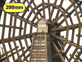 タムロンの高倍率ズームレンズの焦点距離200mmで撮影した写真