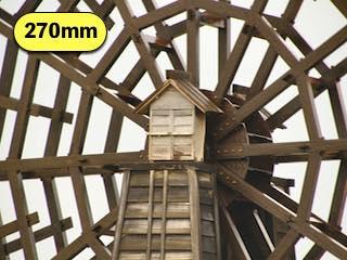 タムロンの高倍率ズームレンズの焦点距離270mmで撮影した写真