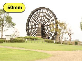 タムロンの高倍率ズームレンズの焦点距離50mmで撮影した写真
