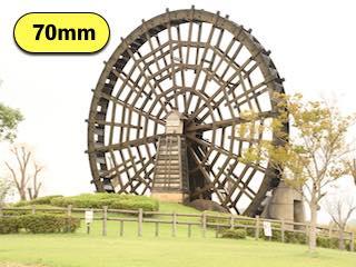 タムロンの高倍率ズームレンズの焦点距離70mmで撮影した写真