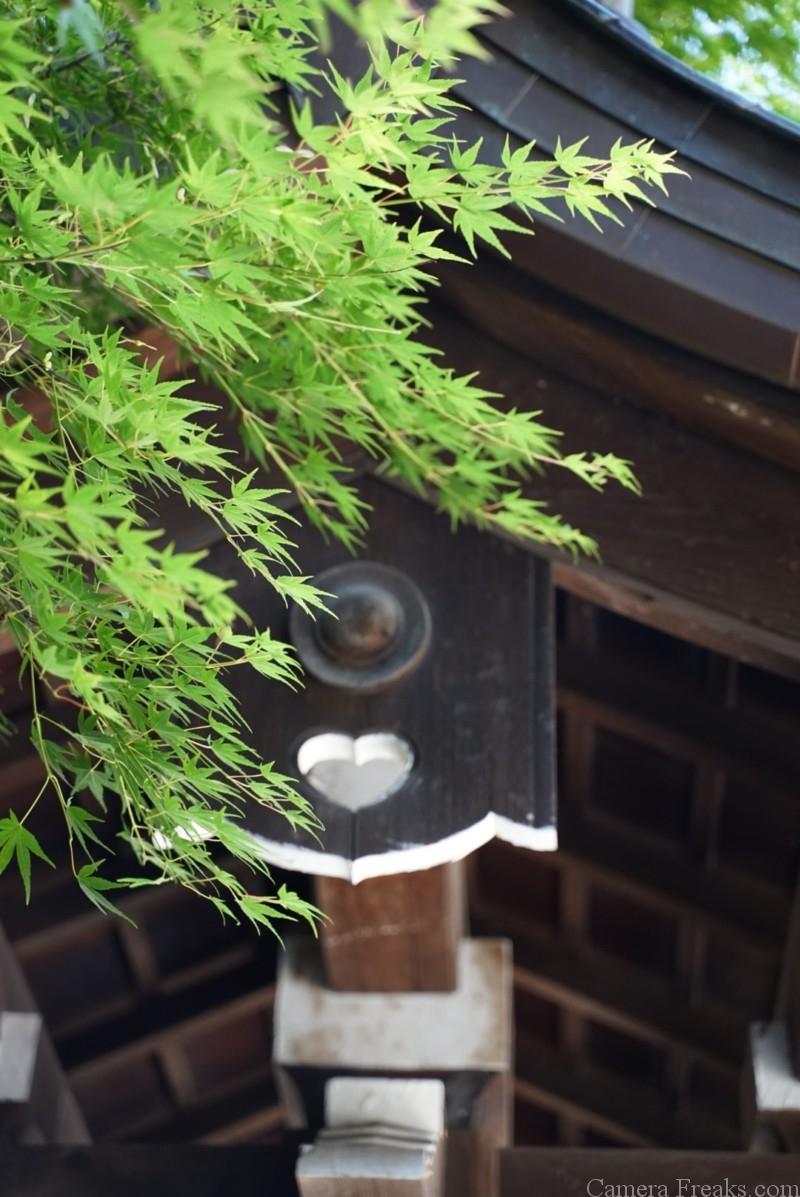 近江神宮の紅葉と不思議なオブジェ