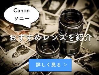 Canonとソニーのおすすめレンズ一覧