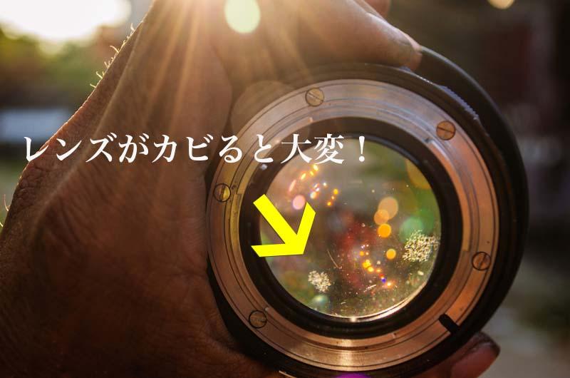カメラやレンズを防湿庫に入れる必要性